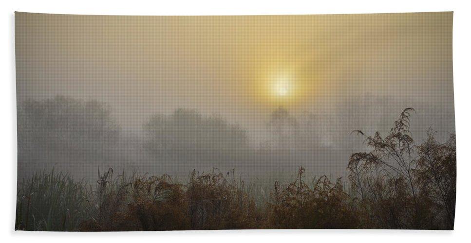 Sunrise On Foggy Morning Beach Towel featuring the photograph A Foggy Sunrise by Carolyn Marshall