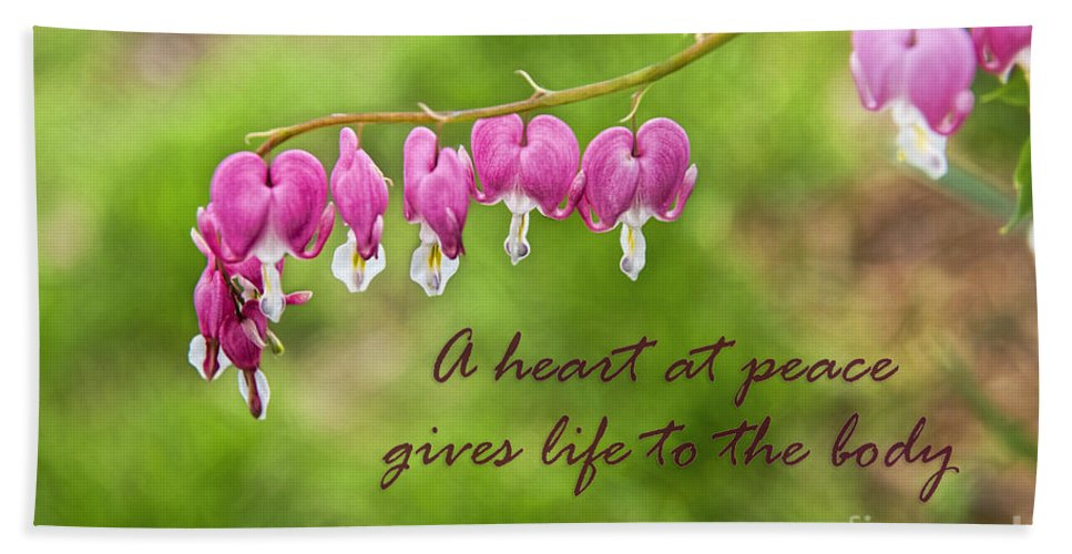 Bleeding Heart Flowers Beach Towel featuring the photograph A Heart At Peace by David Arment