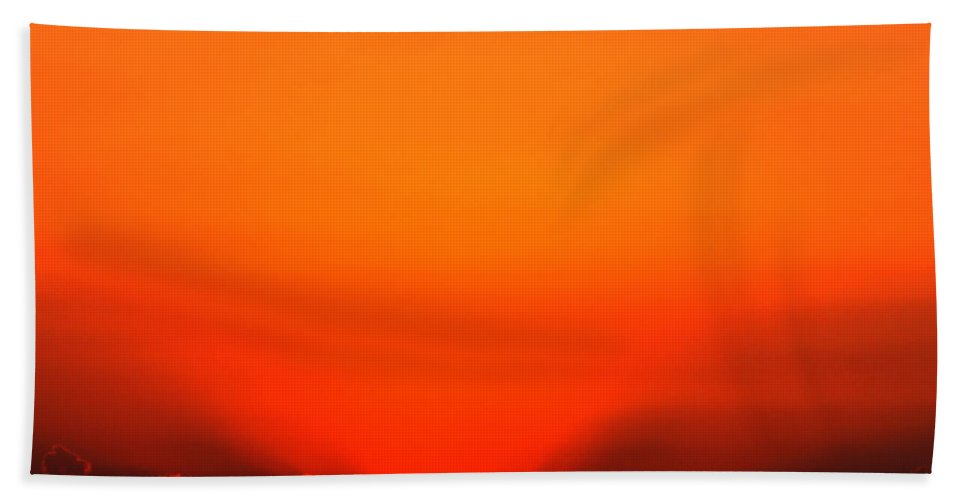 Sun Beach Towel featuring the photograph A New Day by Amanda Barcon