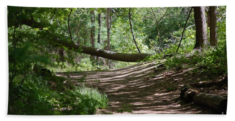 Landscape Beach Sheet featuring the photograph A Path In The Woods by David Lane