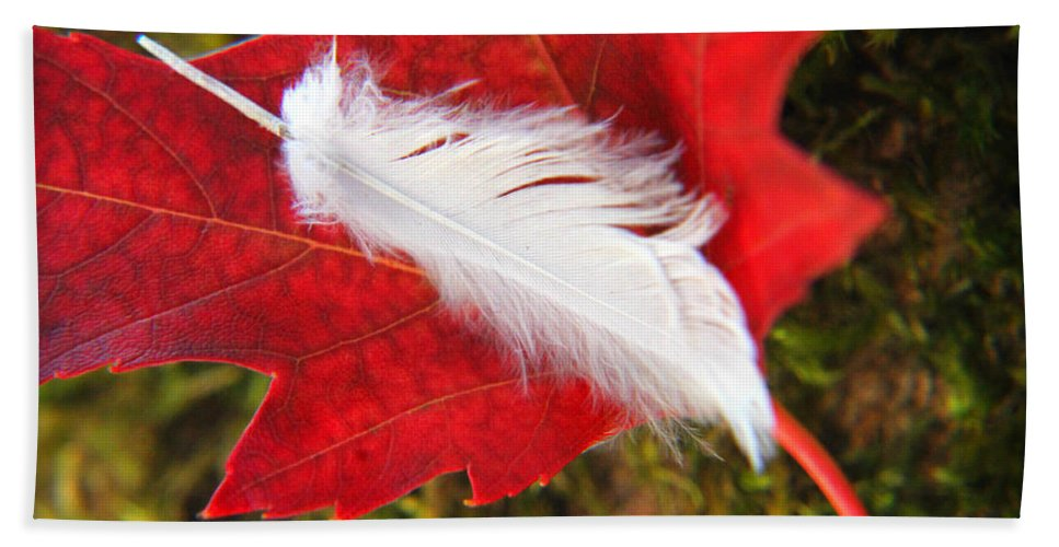 Red Beach Towel featuring the photograph A Perfect Fall by Katie Wing Vigil