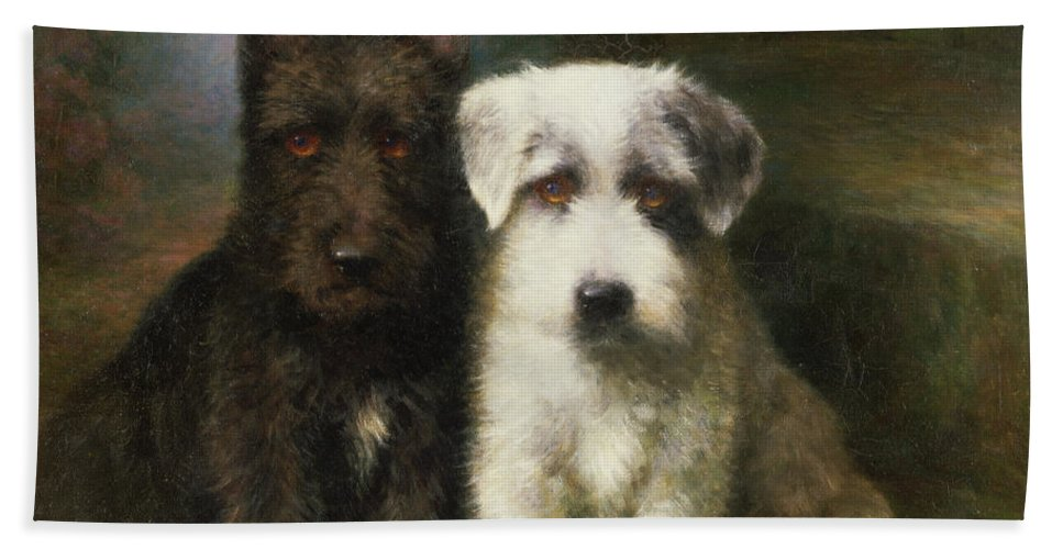 Dogs Beach Sheet Featuring The Painting A Scottish And Sealyham Terrier By Lilian Cheviot