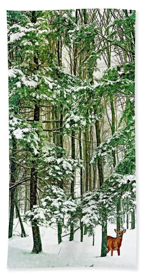 Deer Beach Towel featuring the photograph A Snowy Day by Steve Harrington