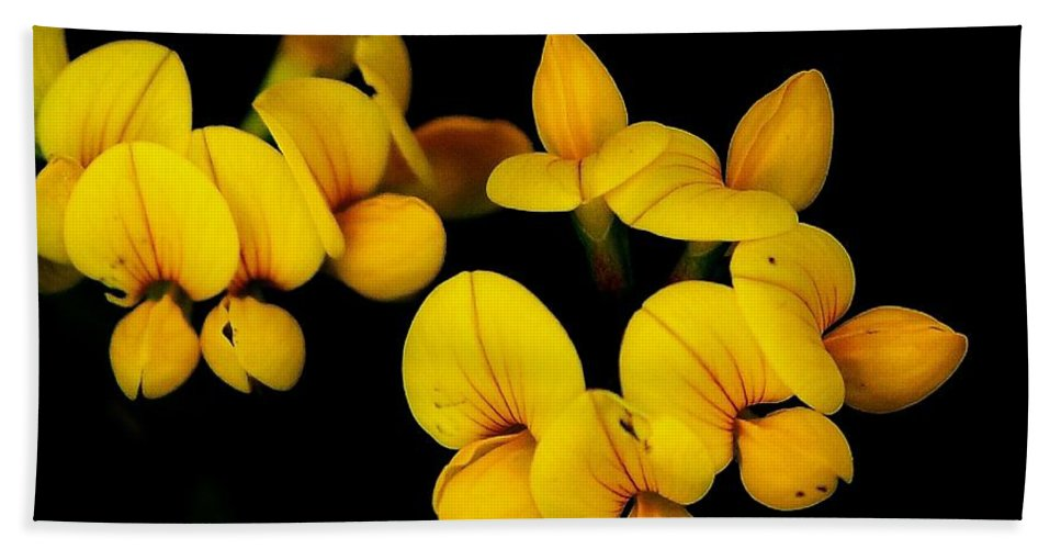 Digital Photography Beach Towel featuring the photograph A Study In Yellow by David Lane