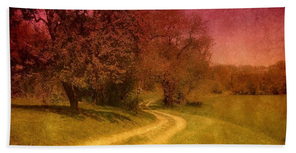Country Beach Towel featuring the photograph A Winding Road - Bayonet Farm by Angie Tirado
