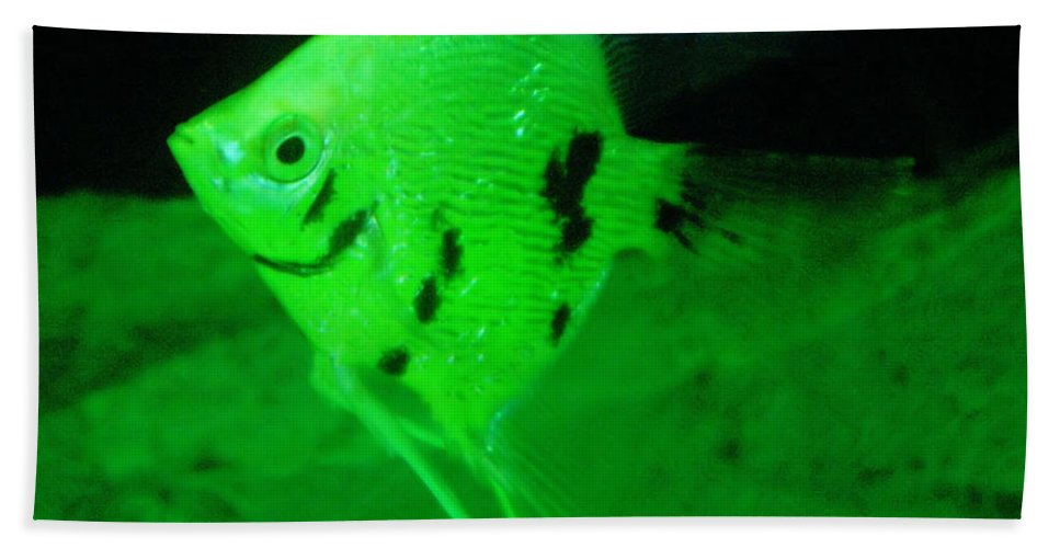 Fish Beach Towel featuring the photograph A Yellow Fish by Jeff Swan