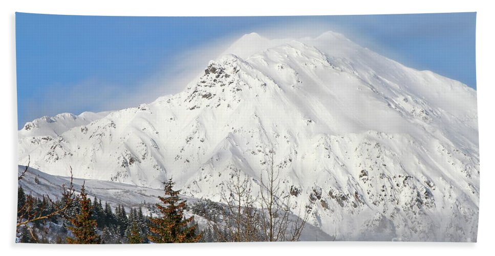 Mountain Beach Towel featuring the photograph Above The Tree Line by Rick Monyahan