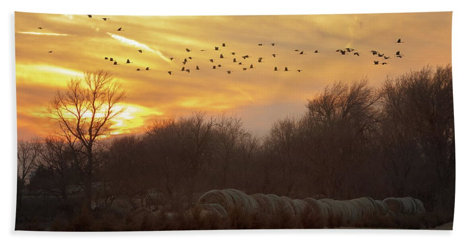 Sandhill Cranes Beach Towel featuring the photograph Across The Sky by Susan Rissi Tregoning
