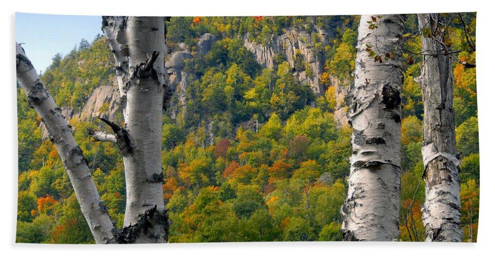 Adirondack Mountains New York Beach Sheet featuring the photograph Adirondack Mountains New York by David Lee Thompson