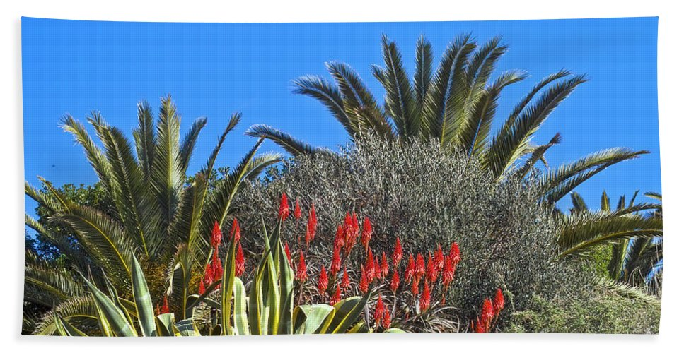 Europe Beach Towel featuring the photograph Algarve Plants by Heiko Koehrer-Wagner