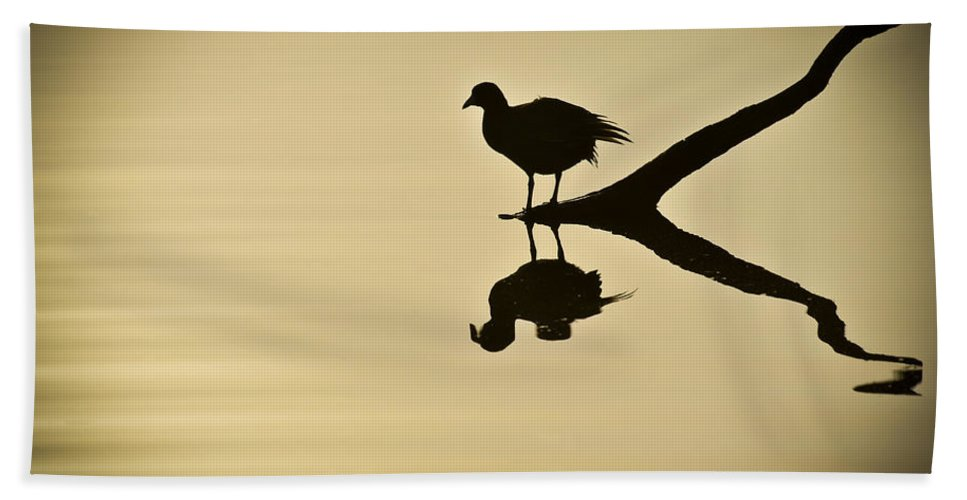 Bird Silhouette Beach Towel featuring the photograph All By Myself by Carolyn Marshall
