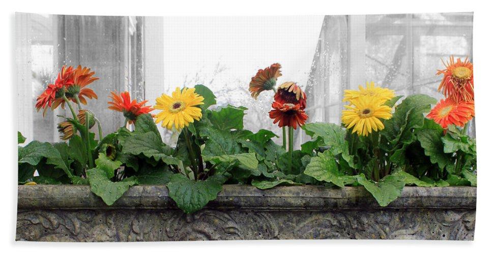 Flower Beach Towel featuring the photograph Allen Garden - Toronto by Munir Alawi