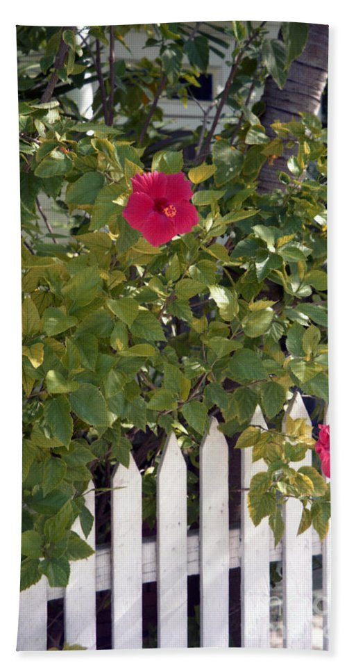 Azelea Beach Towel featuring the photograph Along The Picket Fence by Richard Rizzo