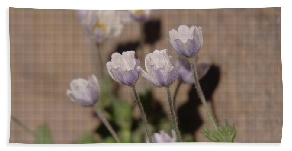 Flowers Beach Towel featuring the photograph Alpine Flowers by Jeff Swan
