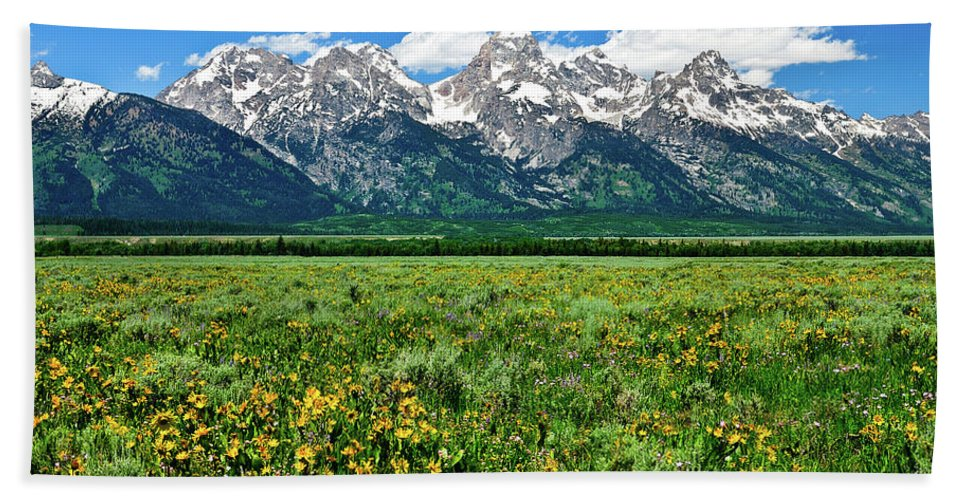 Grand Teton National Park Beach Towel featuring the photograph Alpine Spring by Greg Norrell