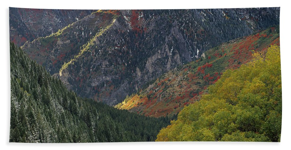 American Fork Canyon Beach Towel featuring the photograph American Fork Canyon by Leland D Howard
