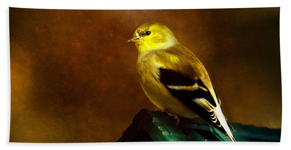 Finch Beach Towel featuring the photograph American Gold Finch In Texture by Lana Trussell