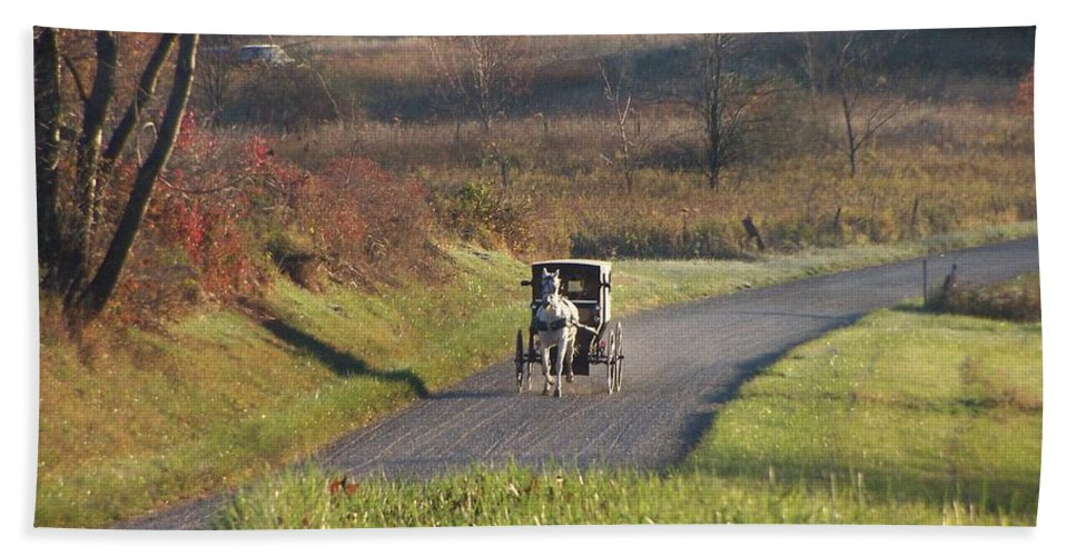 Amish Country Beach Towel featuring the photograph Amish Country Horse And Buggy In Autumn by Charlene Cox