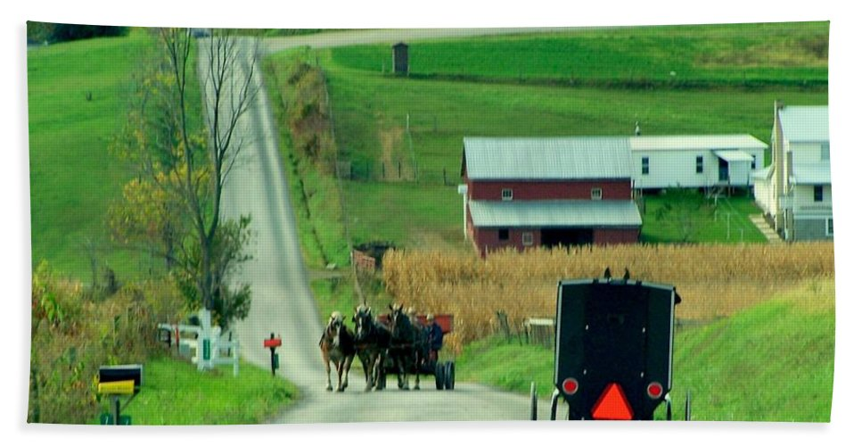 Amish Beach Towel featuring the photograph Amish Horse And Buggy Farm by Charlene Cox