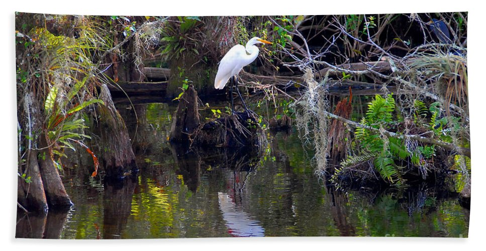 Everglades National Park Florida Beach Towel featuring the photograph An Egrets World by David Lee Thompson