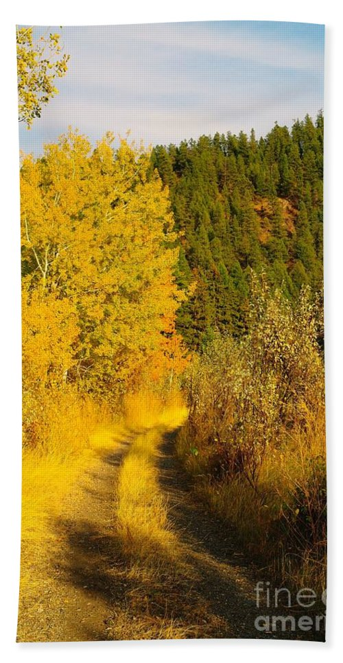 Autumn Beach Towel featuring the photograph An October Path  by Jeff Swan