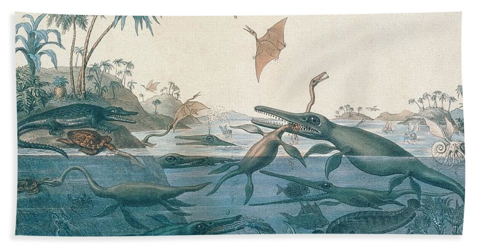 Duria Antiquior (ancient Dorset) Depicting A Imaginative Reconstruction Of The Life Of The Jurassic Seas Beach Sheet featuring the drawing Ancient Dorset by Henry Thomas De La Beche