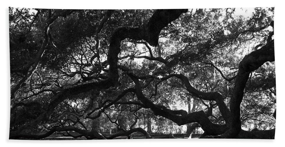Angel Oak Beach Towel featuring the photograph Angel Oak Limbs BW by Susanne Van Hulst