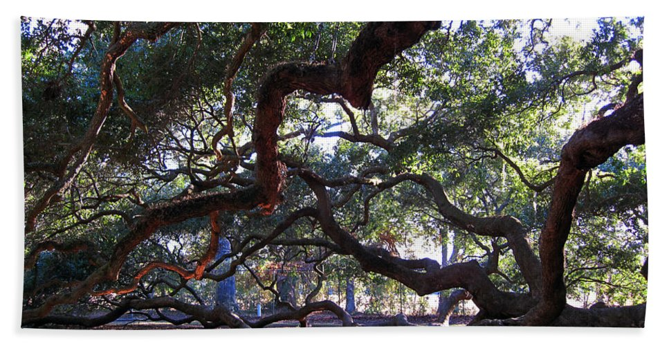 Photography Beach Towel featuring the photograph Angel Oak side view by Susanne Van Hulst
