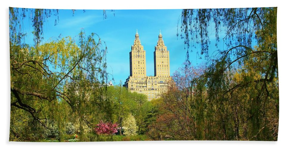 Central Park Beach Towel featuring the photograph Perfect Morning In The Park by Catie Canetti