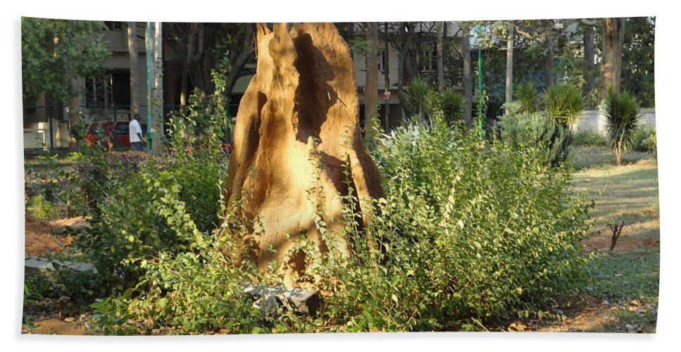 Ant Beach Towel featuring the photograph Anthill by Usha Shantharam