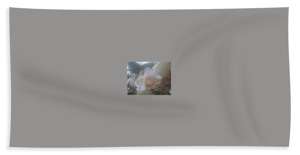 White Flower Beach Towel featuring the photograph Antique White II by R Chambers