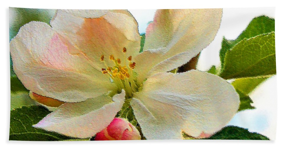 Apple Beach Towel featuring the photograph Apple Blossom by Kristin Elmquist