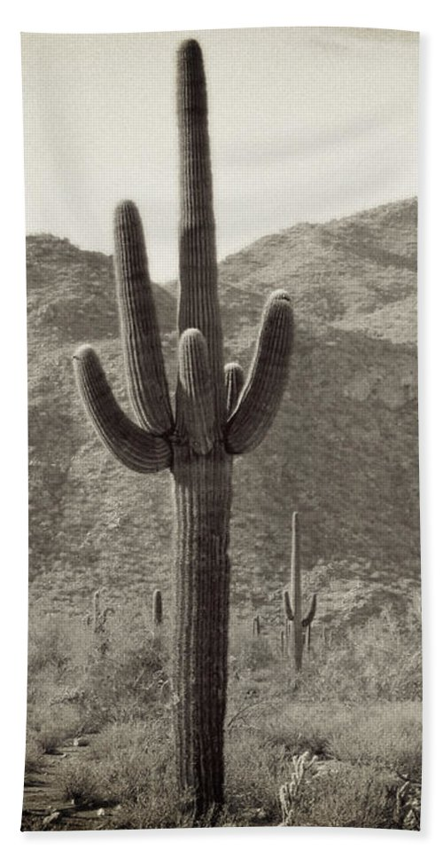 White Tank Sunset Beach Towel featuring the photograph Arizona Desert by Methune Hively