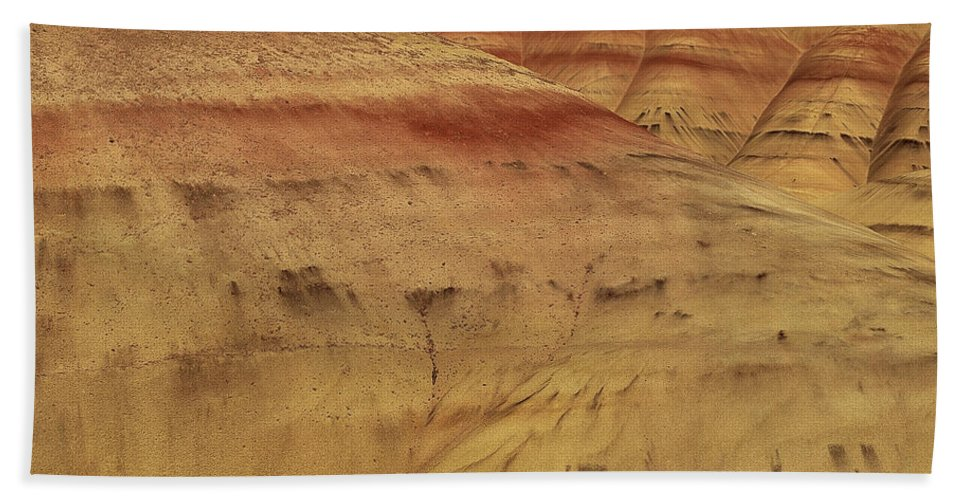 Texture Beach Towel featuring the photograph Art In Nature by Leland D Howard