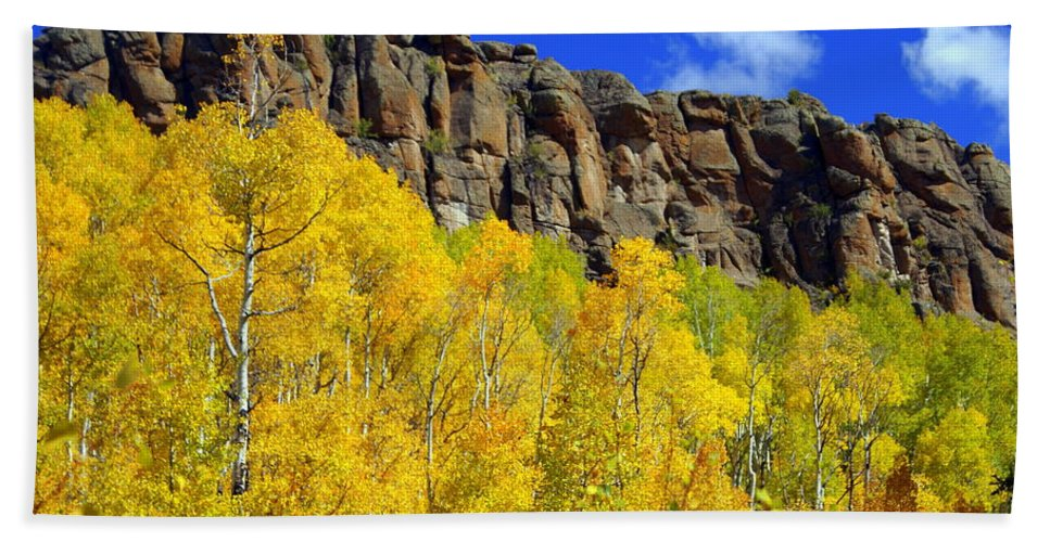 Fall Colors Beach Towel featuring the photograph Aspen Glory by Marty Koch