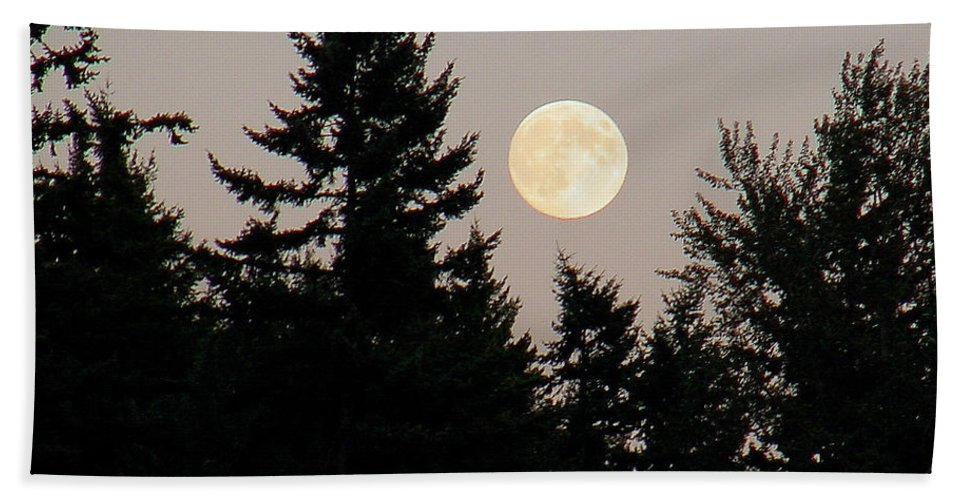 August Beach Towel featuring the photograph August Full Moon - 1 by Shirley Heyn