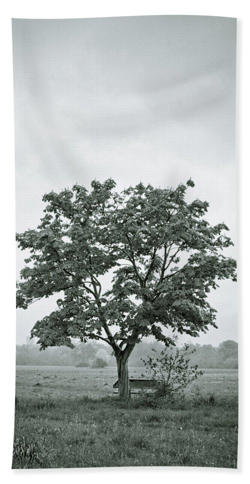 Tree Beach Towel featuring the photograph August In England by Andy Smy