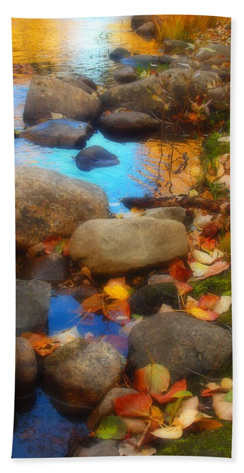 Autumn Beach Towel featuring the photograph Autumn By The Creek by Tara Turner
