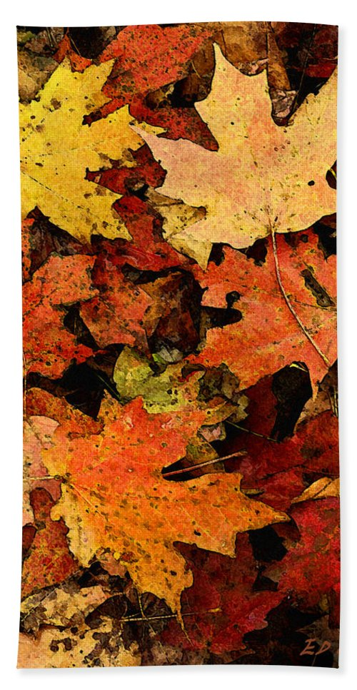 Autumn Beach Towel featuring the photograph Autumn Color by Ed A Gage