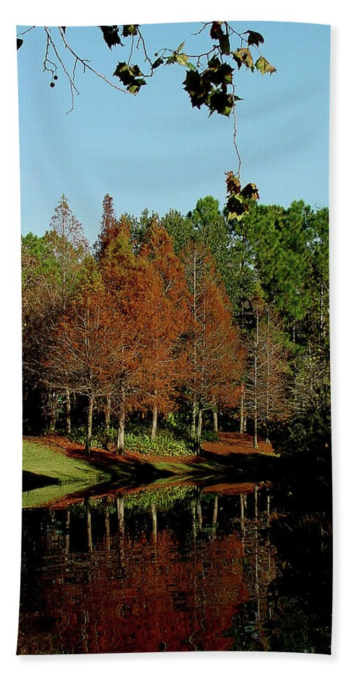 Autumn Beach Towel featuring the photograph Autumn Color Reflected by Shirley Heyn