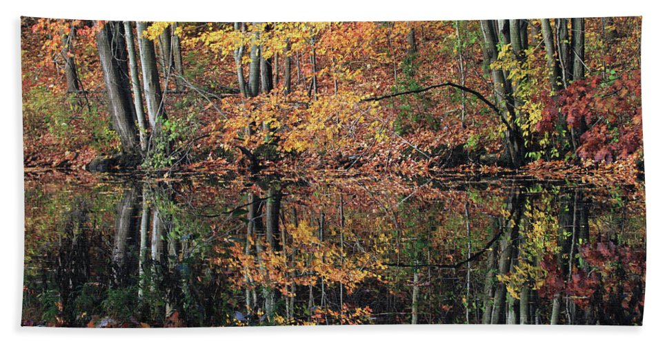 Autumn Beach Towel featuring the photograph Autumn Colors Reflect by Karol Livote
