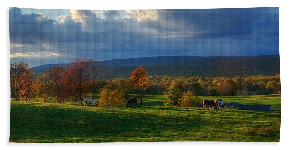 Farm Beach Towel featuring the photograph Autumn Evening by Eleanor Bortnick
