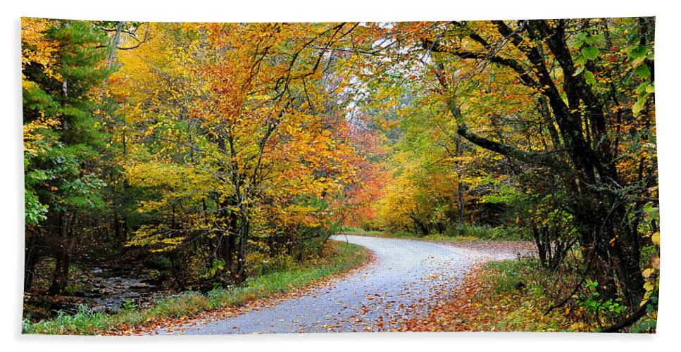 Autum Beach Towel featuring the photograph Autumn Glory by Todd Hostetter