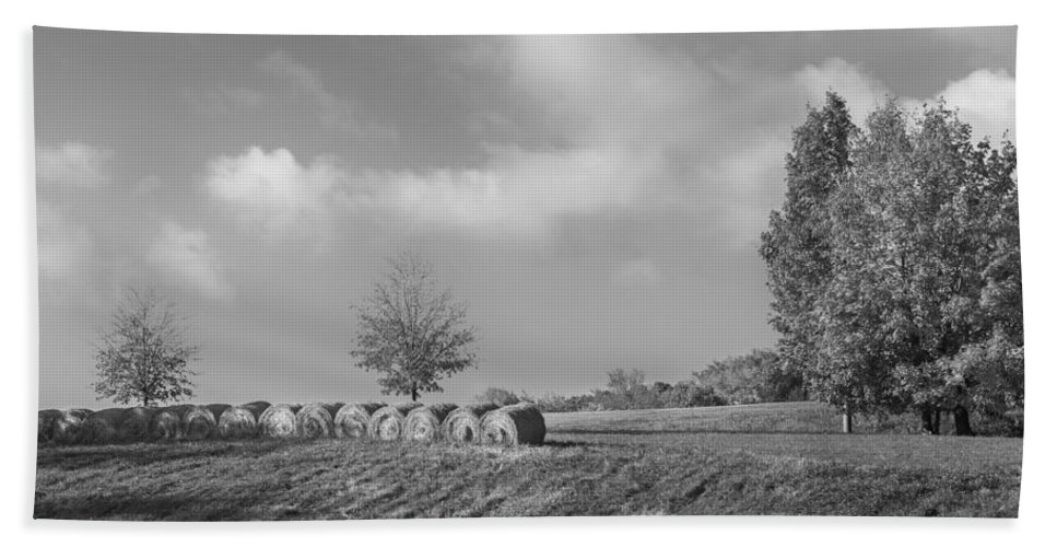 Black And White Beach Towel featuring the photograph Autumn Hay Bw by Bill Wakeley