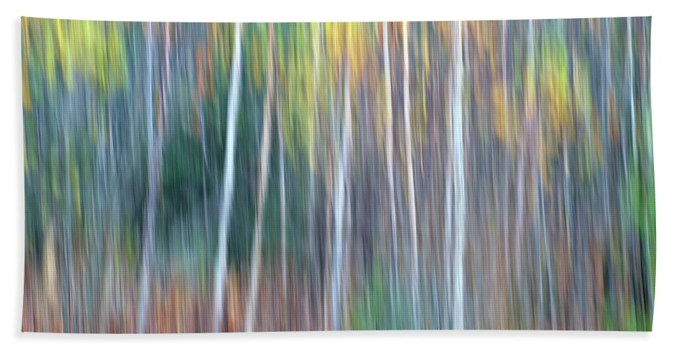 Forest Pastels Form An Autumn Impression Beach Towel featuring the photograph Autumn Impression by Bill Morgenstern