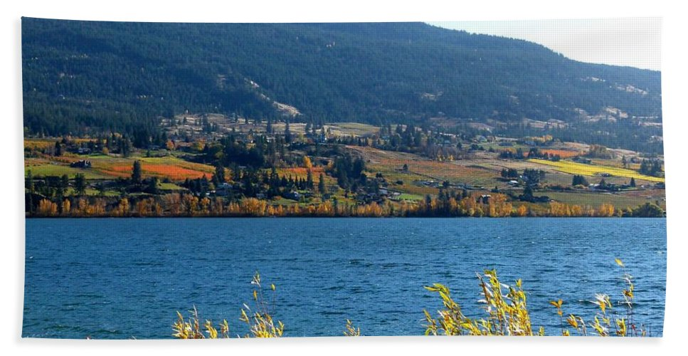 Autumn Beach Towel featuring the photograph Autumn In Oyama 2 by Will Borden