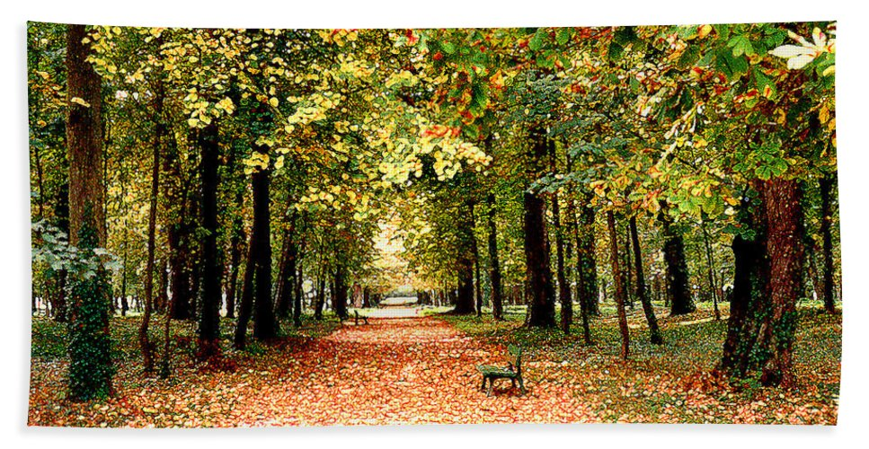 Autumn Beach Sheet featuring the photograph Autumn In The Park by Nancy Mueller
