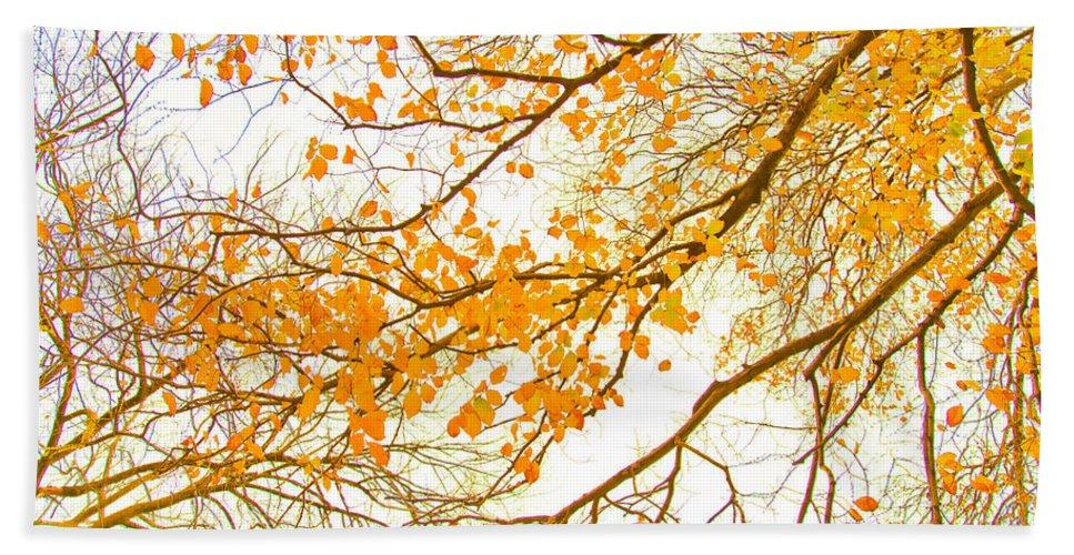 Spring Flowers Beach Towel featuring the photograph Autumn Leaves by Az Jackson