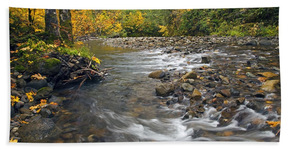 Fall Beach Towel featuring the photograph Autumn Meander by Mike Dawson