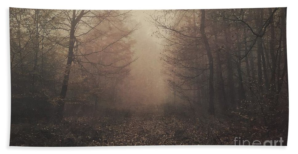 Photography Beach Towel featuring the photograph Autumn Mists by Claudia Cee